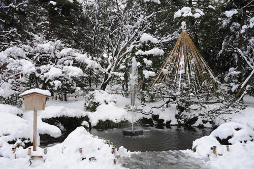 正月の兼六園2015_20