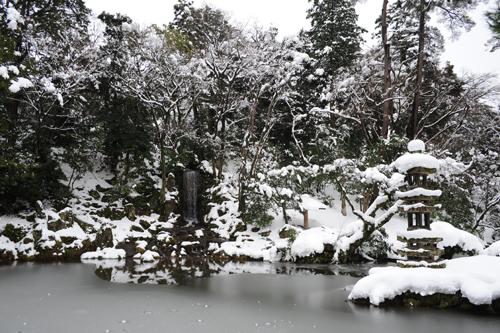 正月の兼六園2015_22