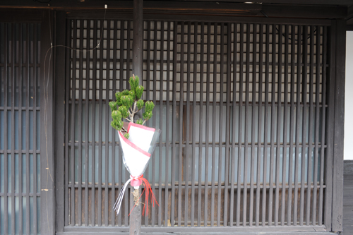 正月のひがし茶屋街2015_02