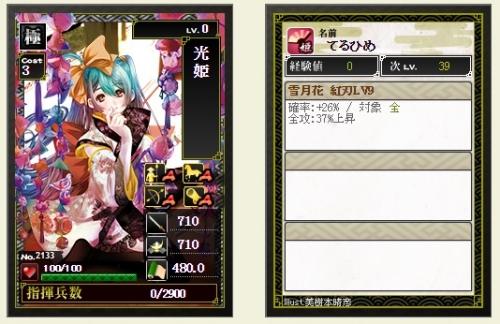 極 光姫 Lv9