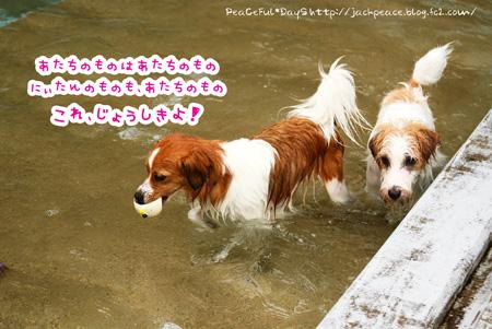 150622_pool9.jpg