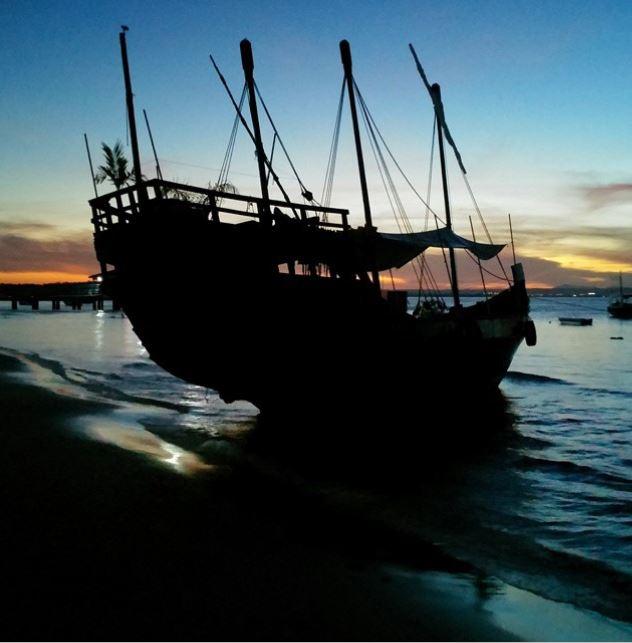 shippa1.jpg
