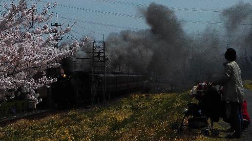 ①秩父鉄道SLパレエクスプレス20150403