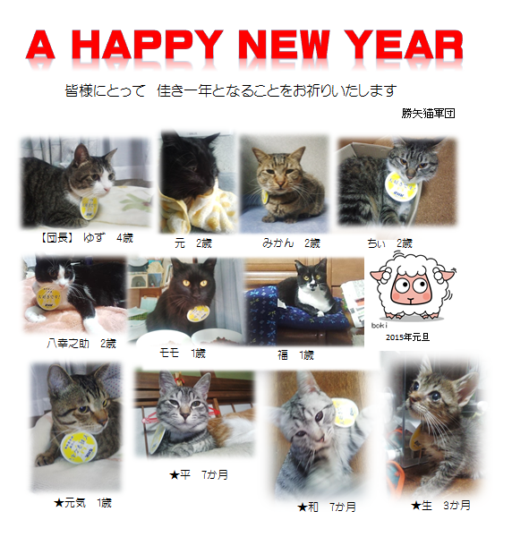 20150102204315b84.png