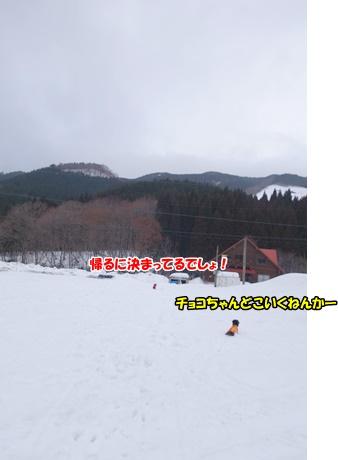 DSC07993.jpg