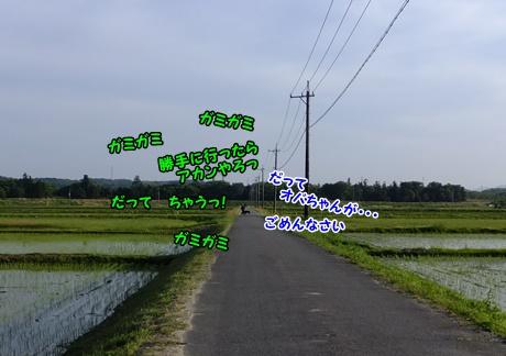 DSCF8805_20150512180440541.jpg