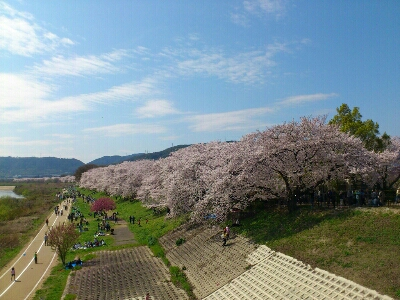 fc2_2015-04-03_14-41-17-490.jpg
