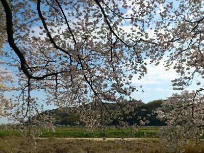 fc2_2015-04-03_14-44-33-589.jpg