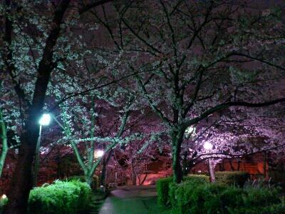 fc2_2015-04-03_23-00-52-512.jpg