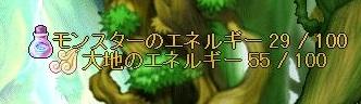 Maple150129_165931.jpg