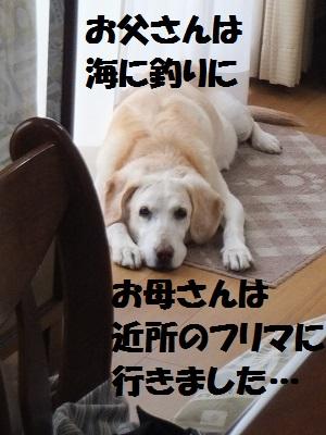 DSCF7714.jpg