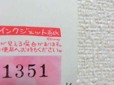 CIMG9300y.jpg
