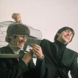 The Beatles - And Your Bird Can Sing2