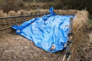 150224第二の堆肥