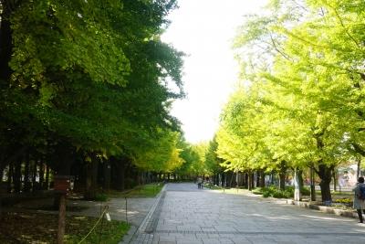 北海道旅行4日目 札幌