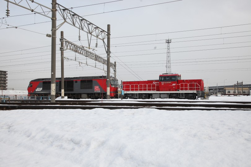 HD502IMG_3972-1.jpg