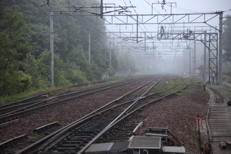 nishinosatoIMG_6607-2.jpg