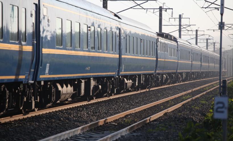 tosei1138IMG_6261-3.jpg