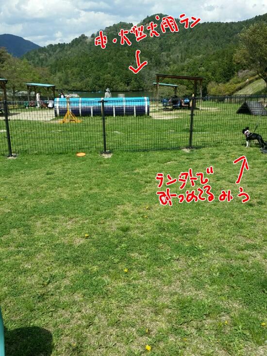 fc2_2015-04-23_09-27-57-102.jpg