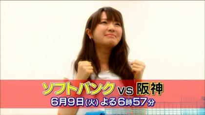 ソフトバンク 阪神野球CM (2)
