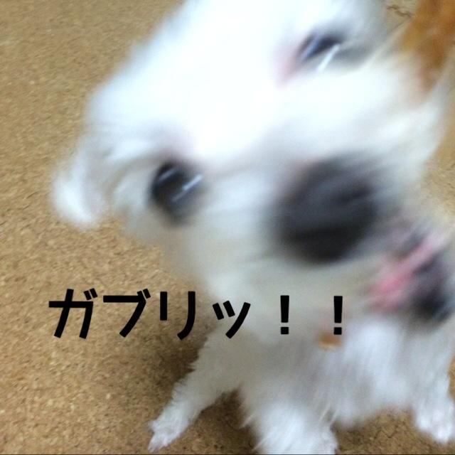 150624_3.jpg