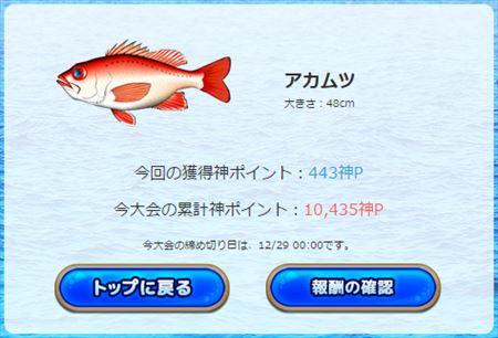 20150120080440fa5.jpg