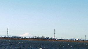 牛久沼の彼方の白富士