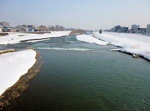 春の豊平川