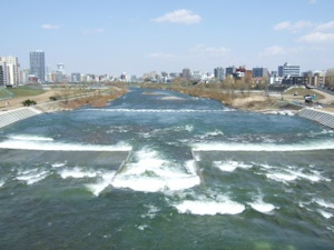 雪解けで増水する豊平川