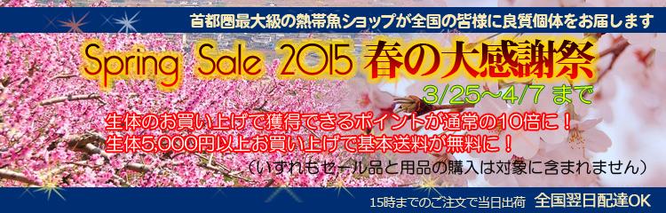 201503online_spring_banner.jpg