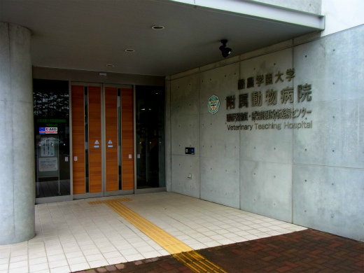 s-649-1大学動物病院