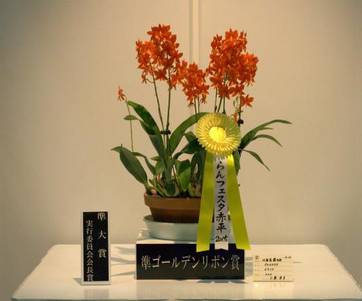 s-650-4準ゴールデンリボン賞