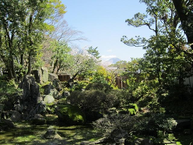 大通寺 庭園