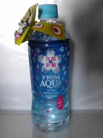 Suica_Aqua_01.jpg