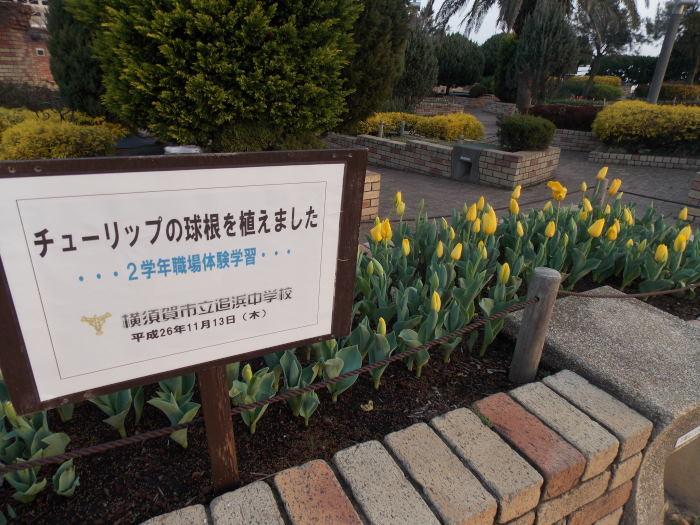 DSCN9888_01.jpg