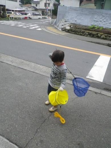 磯遊び (5)