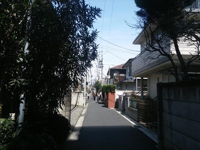 20150328_120422.jpg