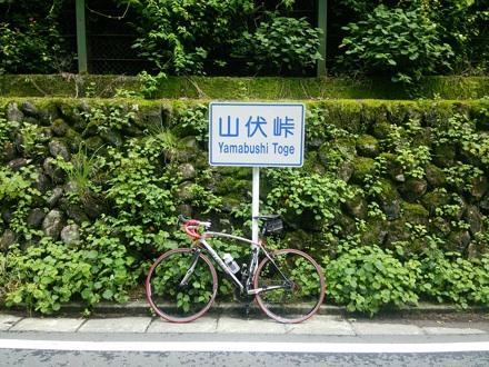 20150620_yamabusi.jpg